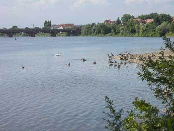 Kindern mit unternehmungen baden-württemberg Lüneburg mit
