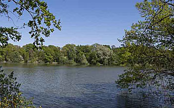 Steinrodsee